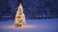 Rosną szanse na białe święta. Sprawdź, gdzie może padać śnieg