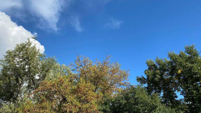 Pogoda na dziś: na ogół pogodnie, do 20 stopni Celsjusza