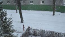Zima - Zbycho